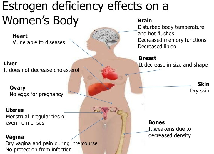 lack of estrogen in women