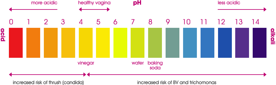 Keeping The Vagina Healthy With Healthy Vaginal Ph